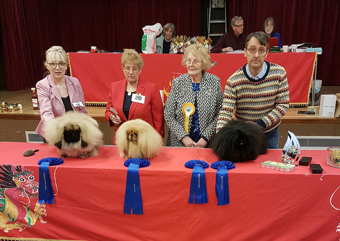 Sovereign Pekingese Association - Club Show Results 2018